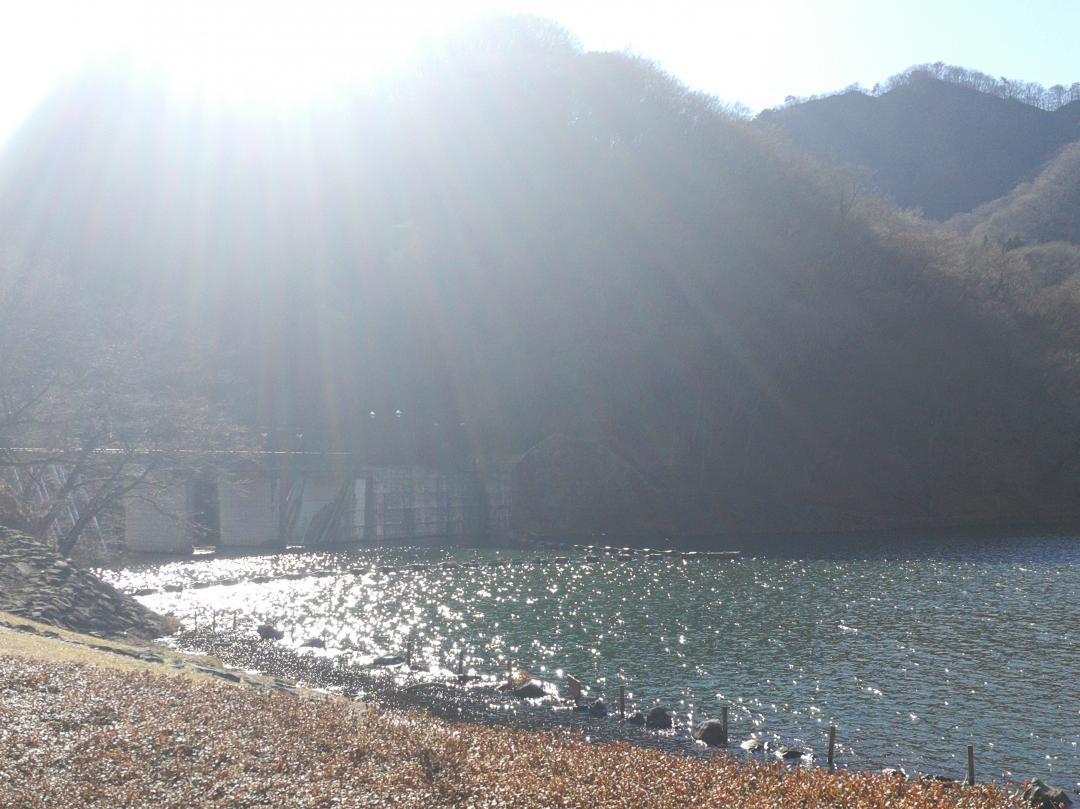 坂本ダム1
