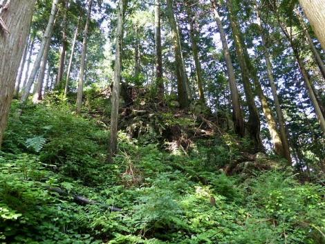 吾野から黒山三滝6