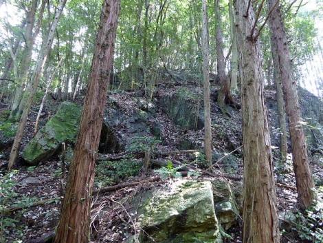 吾野から黒山三滝8