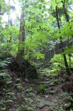 吾野から黒山三滝11