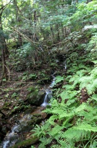吾野から黒山三滝10