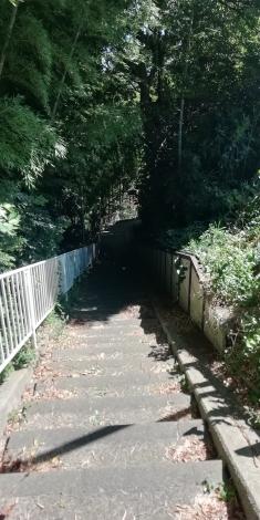 近所の散歩2