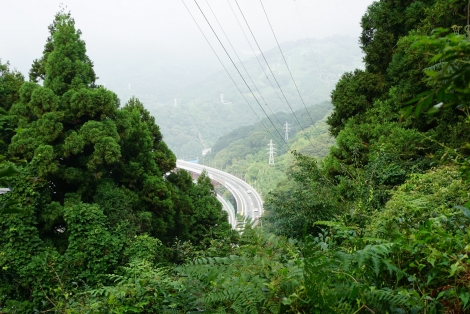 大野山10