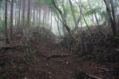 大野山16