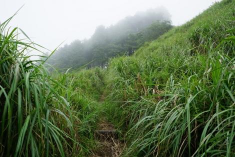 大野山29