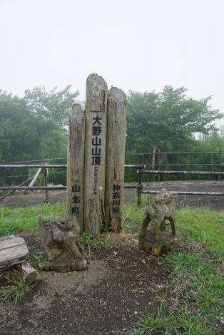 大野山38