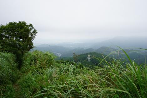 大野山50