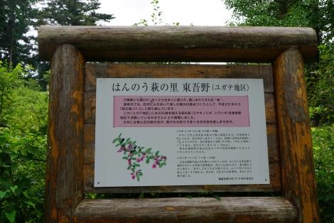ユガテから鎌北湖6