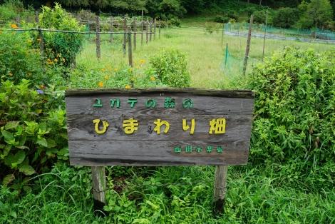 ユガテから鎌北湖7