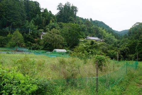 ユガテから鎌北湖8