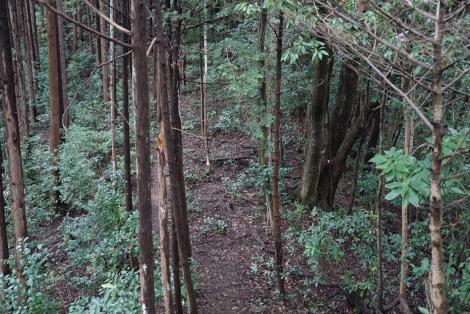 ユガテから鎌北湖14
