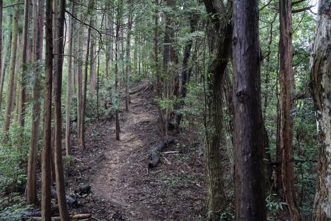 ユガテから鎌北湖15