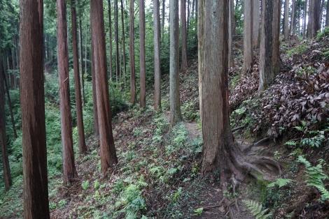 ユガテから鎌北湖20