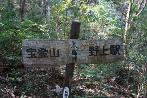 宝登山12