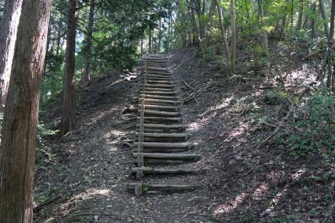 宝登山18