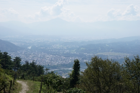 宝登山20