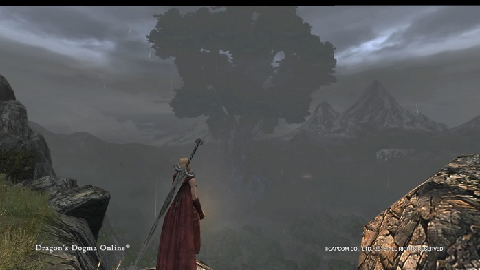 Dragons Dogma Online 14