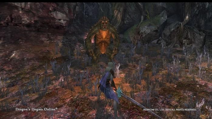 ドラゴンズドグマ オンライン-170