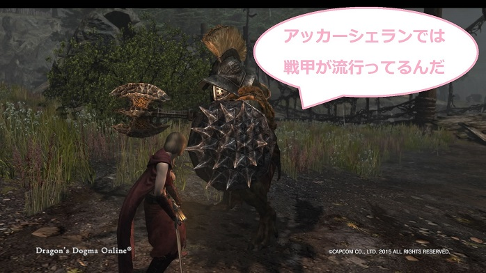 Dragons Dogma Online 21