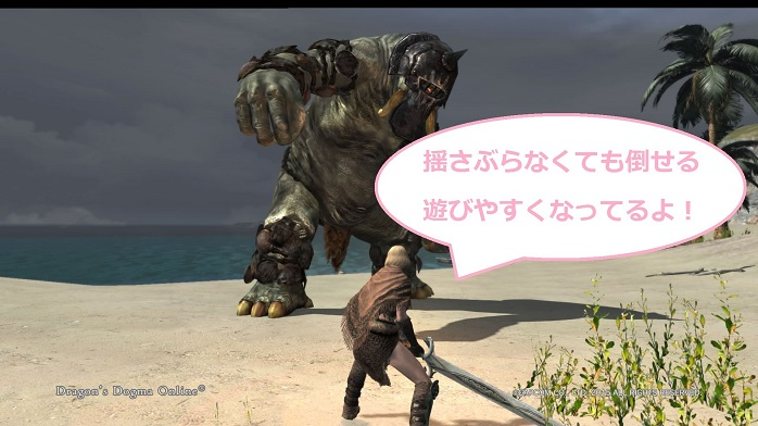 Dragons Dogma Online 4