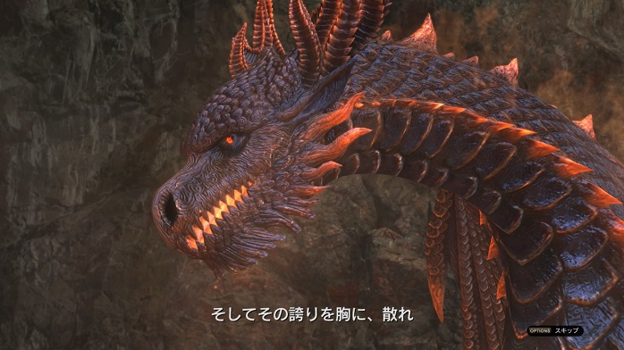 DragonsDogmaOnline-64.jpg