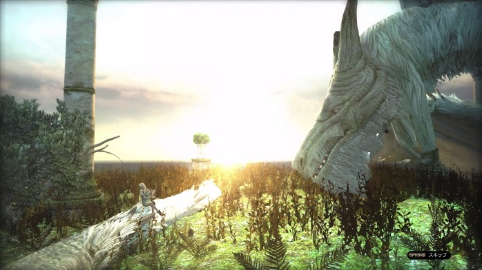 Dragons Dogma Online 9