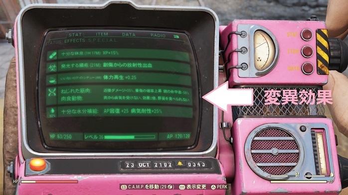 Fallout76-132.jpg