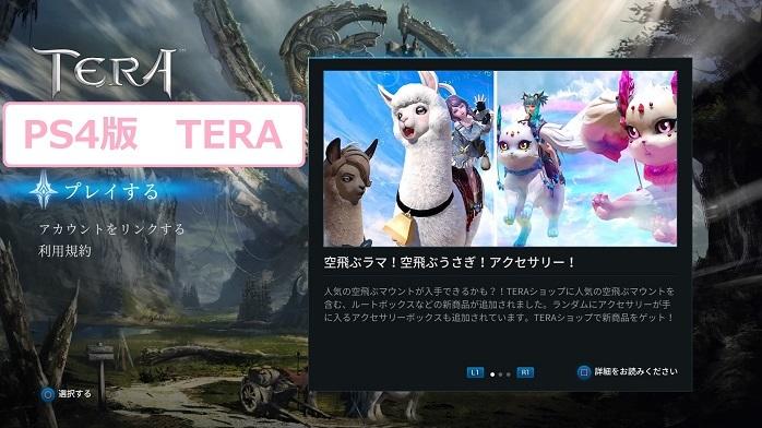 TERA-2.jpg