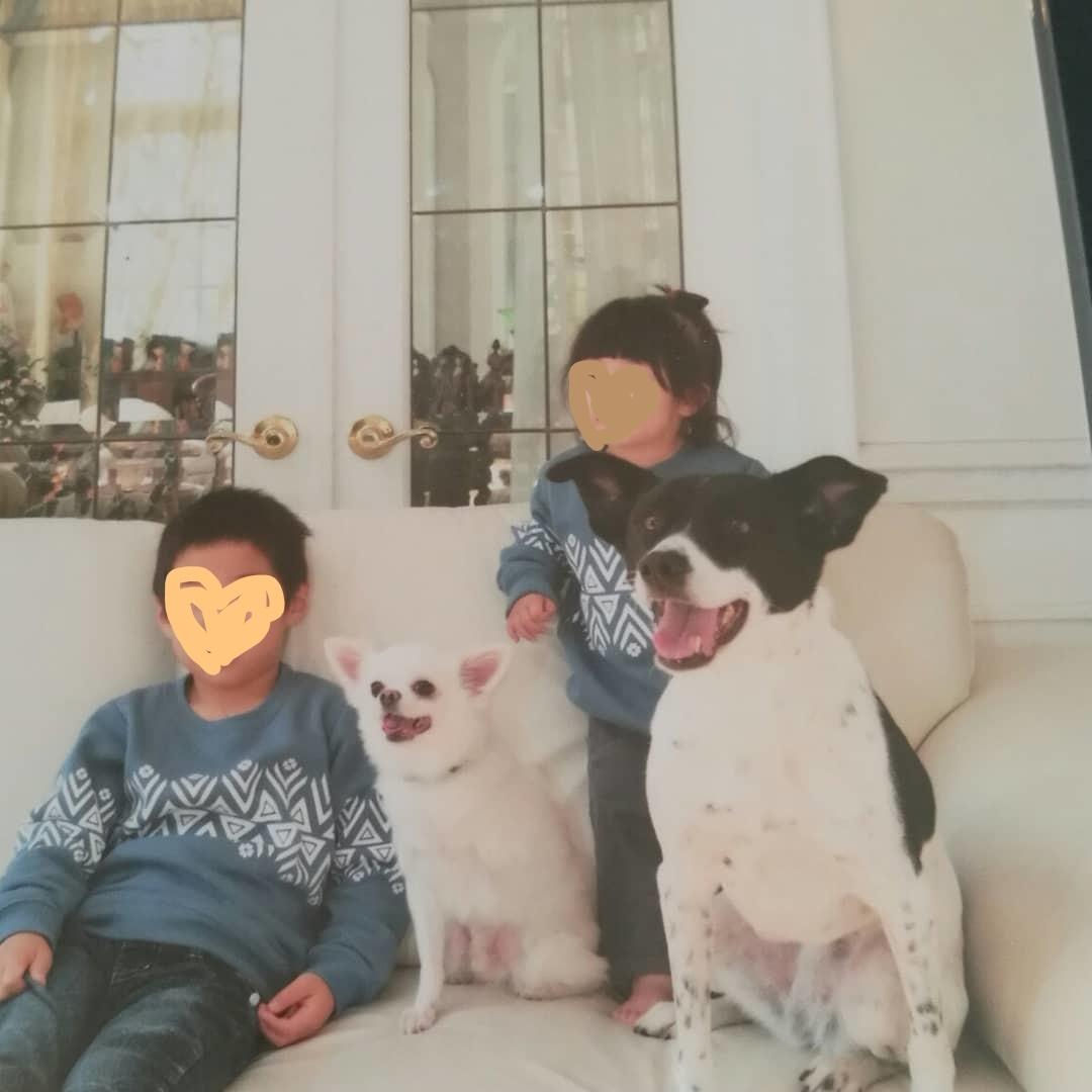 InkedIMG_20181225_142712_770_LI.jpg