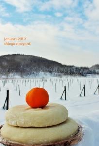1月ブログ写真
