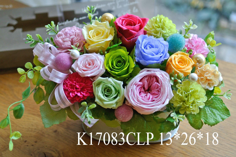 k17083clp-1.jpg