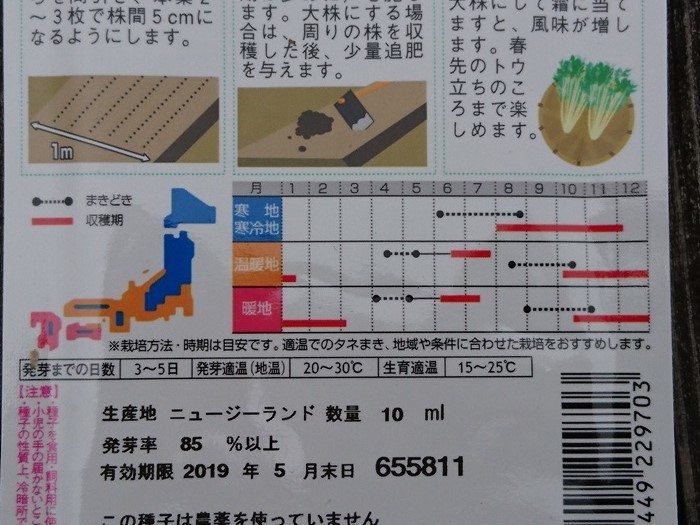 2018-11-04水菜 (4)