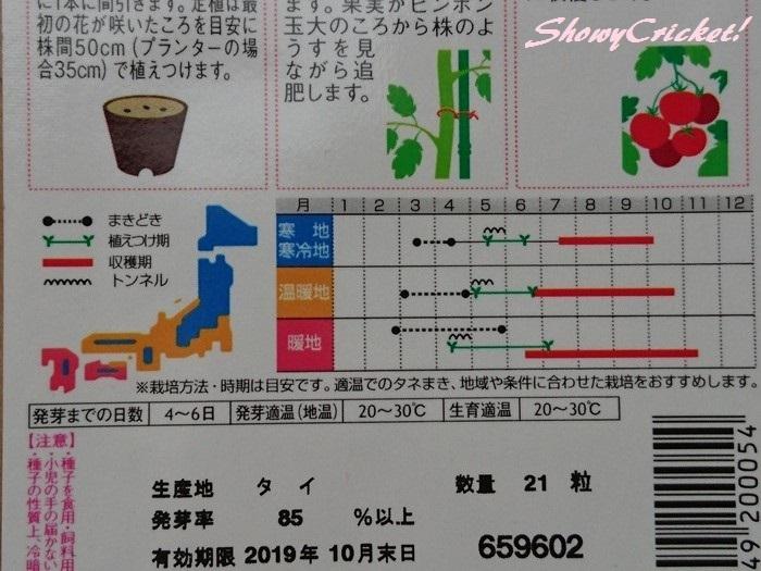 2019-03-06トマト (4)