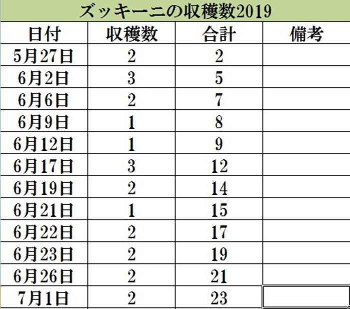 2019-07-01ズッキーニ