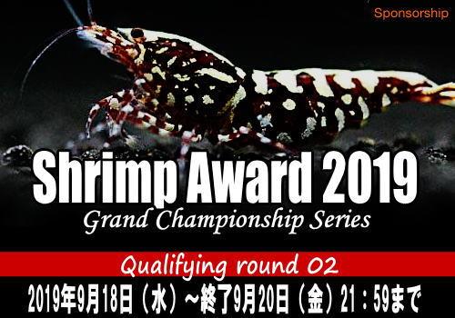 ShrimpAward2019002.jpg