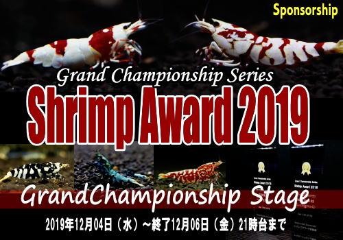 ShrimpAward2019GC1.jpg