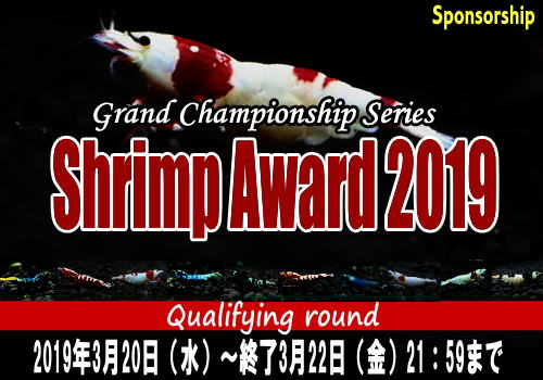 ShrimpAward2019main03.jpg