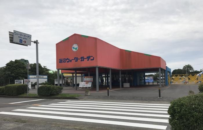 蓮沼ウォーターガーデン導入.jpg