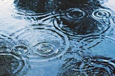 雨粒が落ちる水面