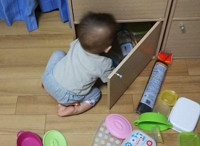 食器棚をあさる息子