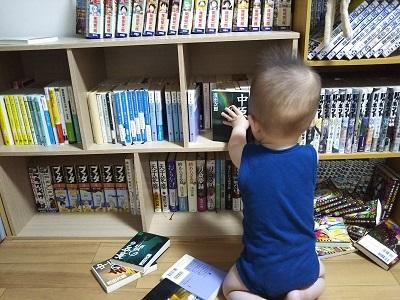 本棚を荒らす息子