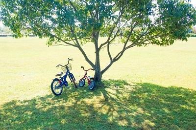 子ども 自転車 2台