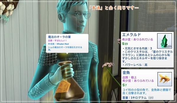 RoM-Camus6-20.jpg