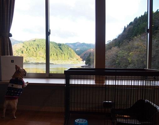 旅行・湯原温泉13