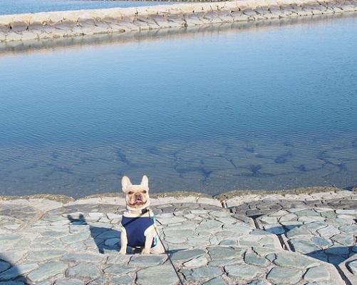 水際公園3