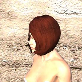 髪 - Kenshiメモ