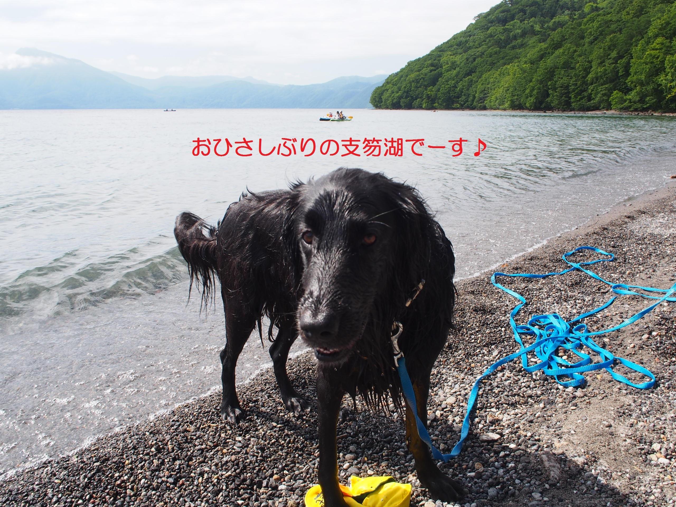 2019-07-07 (09)-2