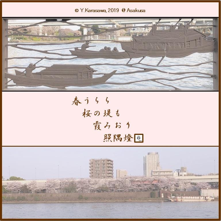 190408隅田川堤の桜2LRG