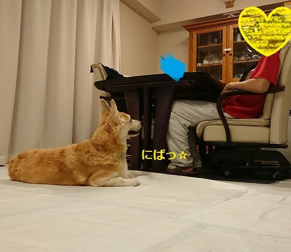 DSC_1355[1]
