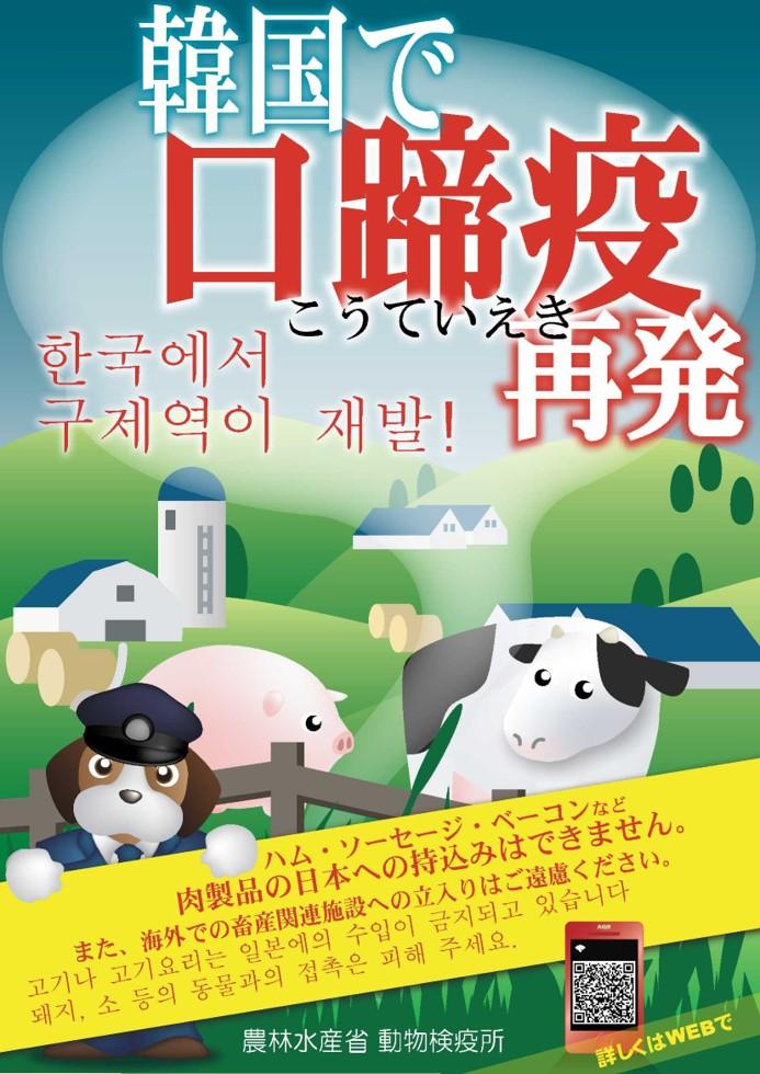 韓国で口蹄疫が再発
